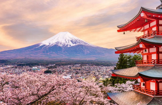 Best places for Hanami